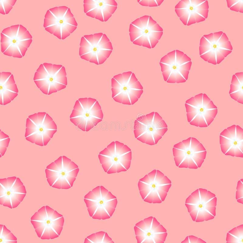 Manhã cor-de-rosa Glory Flower no fundo cor-de-rosa Ilustração do vetor ilustração do vetor
