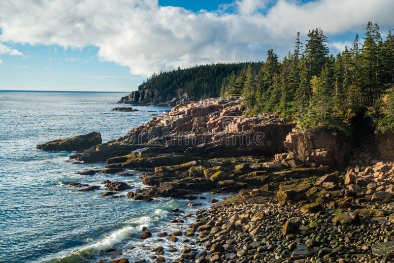 Manhã da costa de Maine fotografia de stock royalty free
