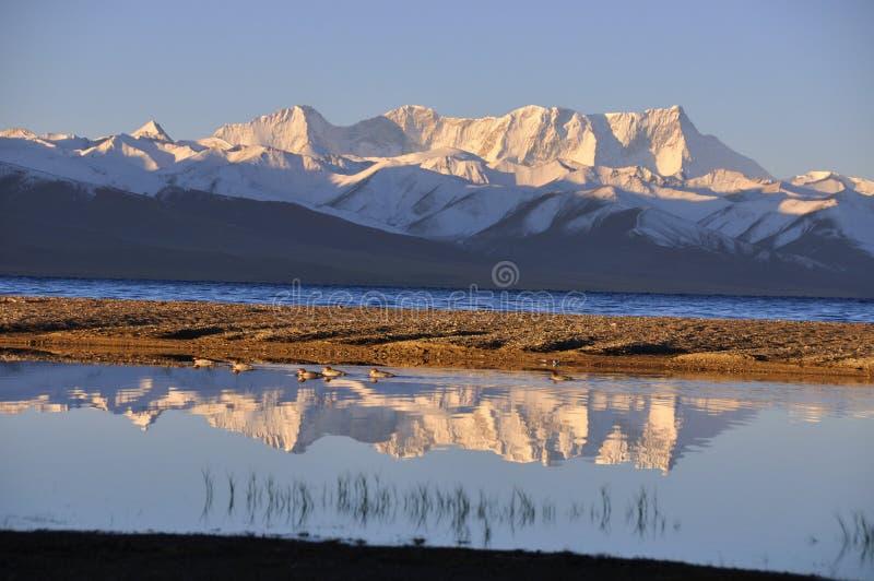 A manhã da montanha da neve foto de stock royalty free