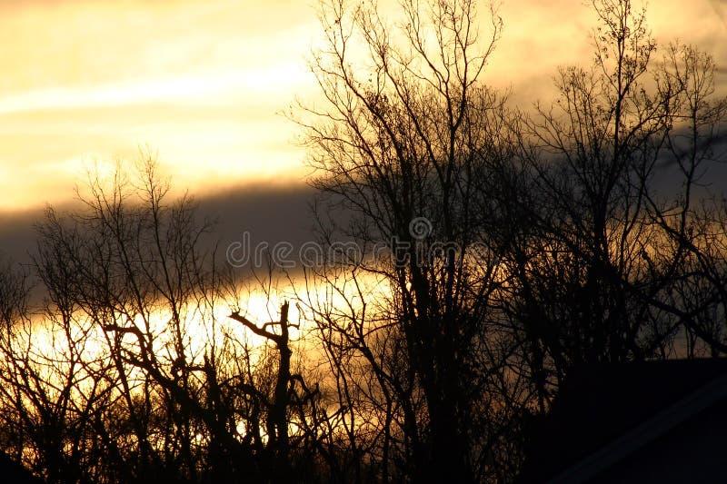 Manhã do inverno imagens de stock royalty free