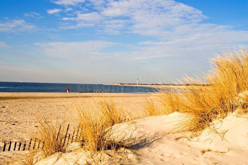 Manhã do inverno na costa imagens de stock royalty free