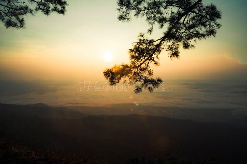Manhã do nascer do sol imagem de stock