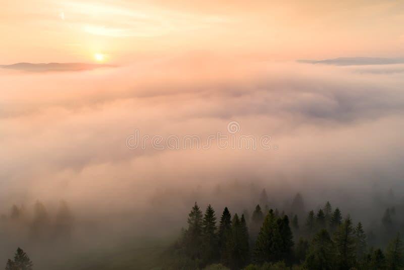 Manhã do outono Enevoe sobre o vale nas montanhas iluminadas pelo sol de aumentação foto de stock royalty free