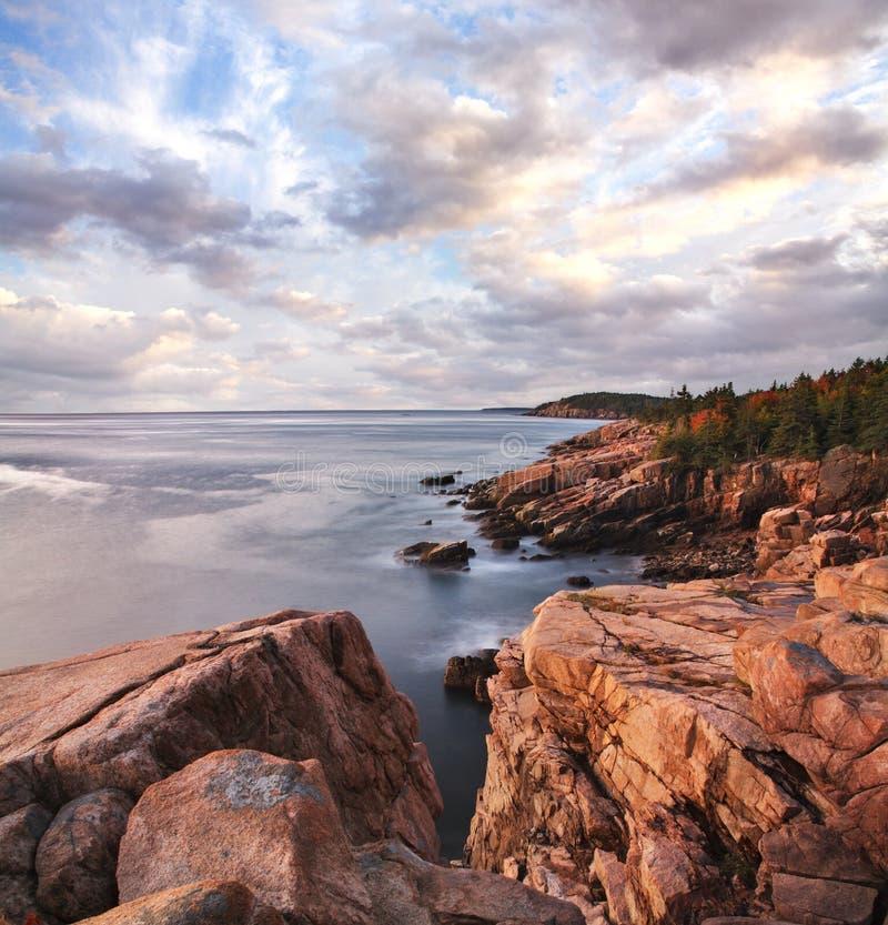 Manhã do Seacoast do Acadia imagem de stock royalty free