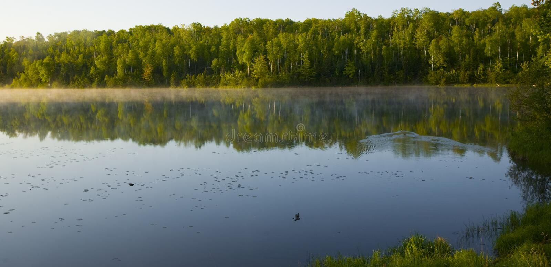 Manhã do verão de Minnesota fotos de stock royalty free