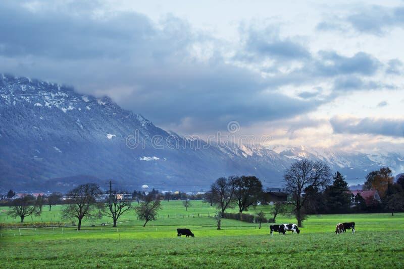 Manhã em Interlaken fotos de stock royalty free