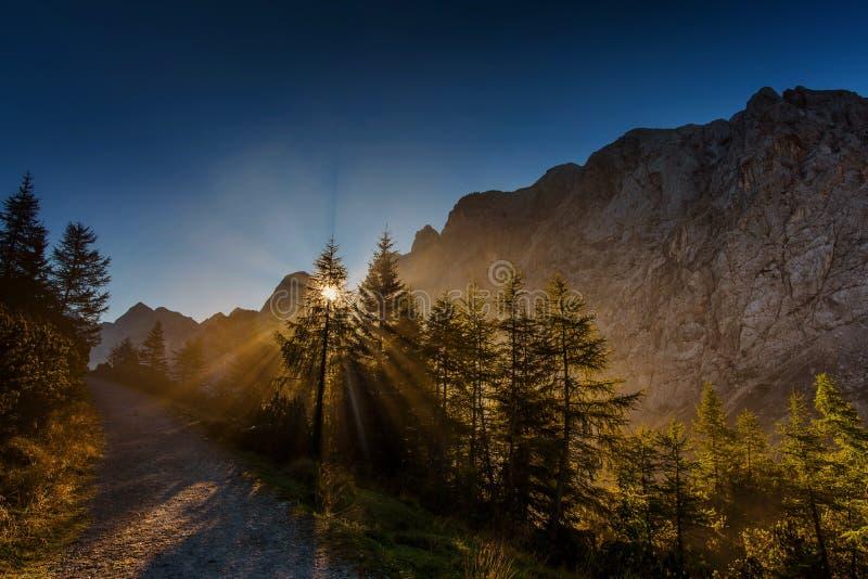 Manhã em Julian Alps imagens de stock