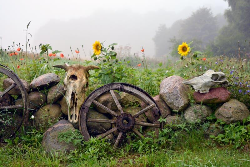 Manhã enevoada na exploração agrícola, na cerca decorativa com rodas e nos crânios imagem de stock