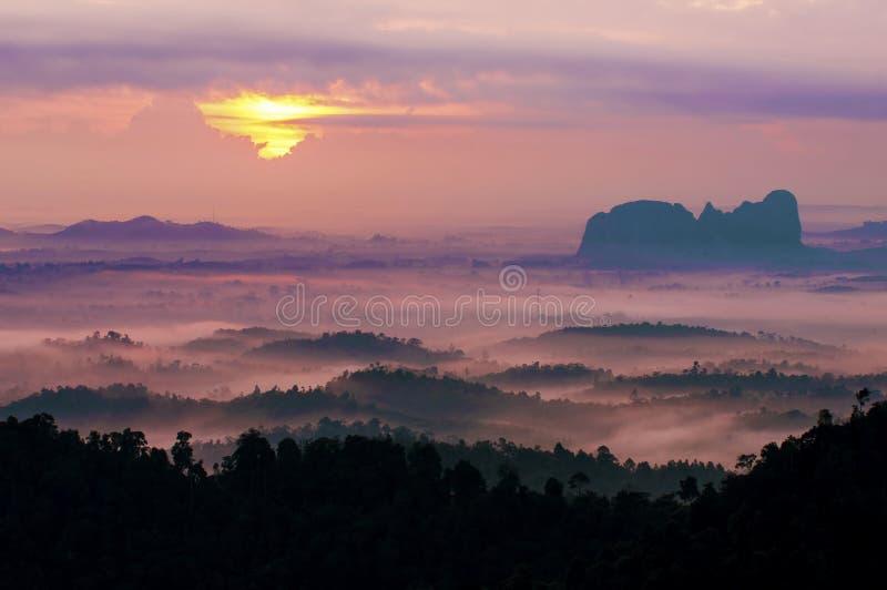 Manhã enevoada no monte do panorama. fotos de stock royalty free