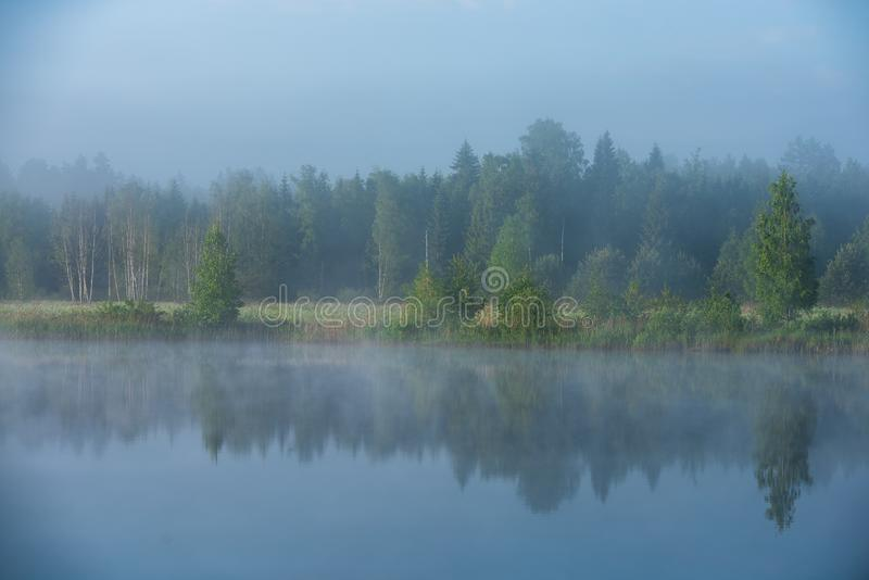 Manhã enevoada pelo lago imagem de stock