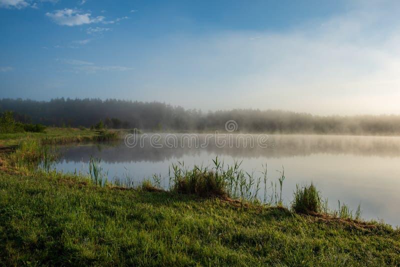 Manhã enevoada pelo lago foto de stock
