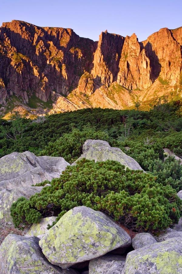 Manhã ensolarada nas montanhas fotografia de stock