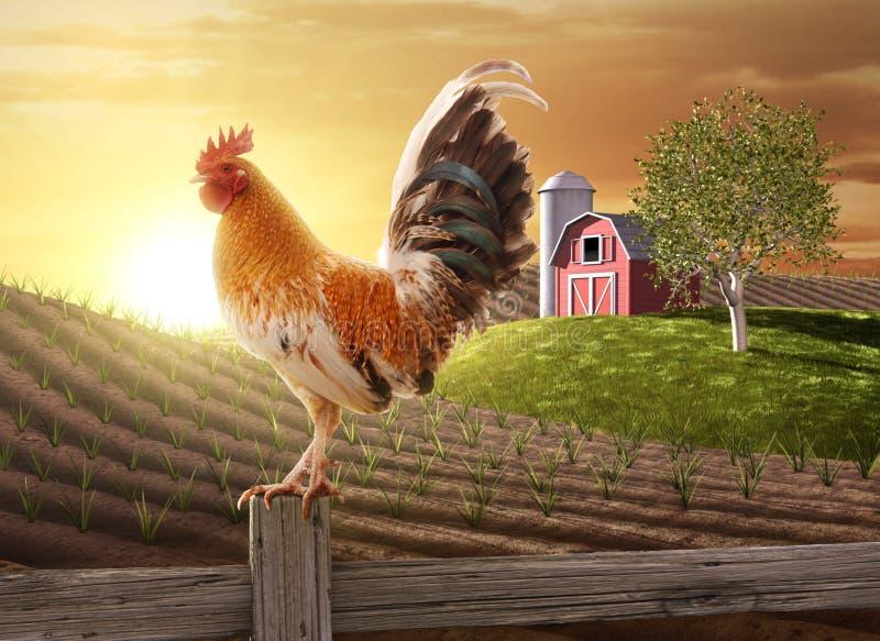 Manhã fresca da exploração agrícola ilustração do vetor