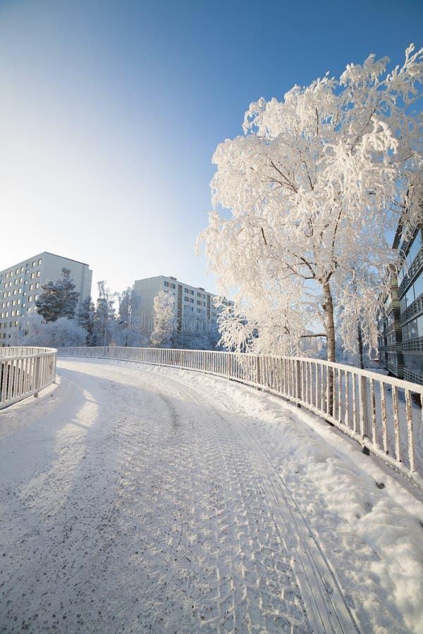 Manhã fresca fria do inverno imagens de stock