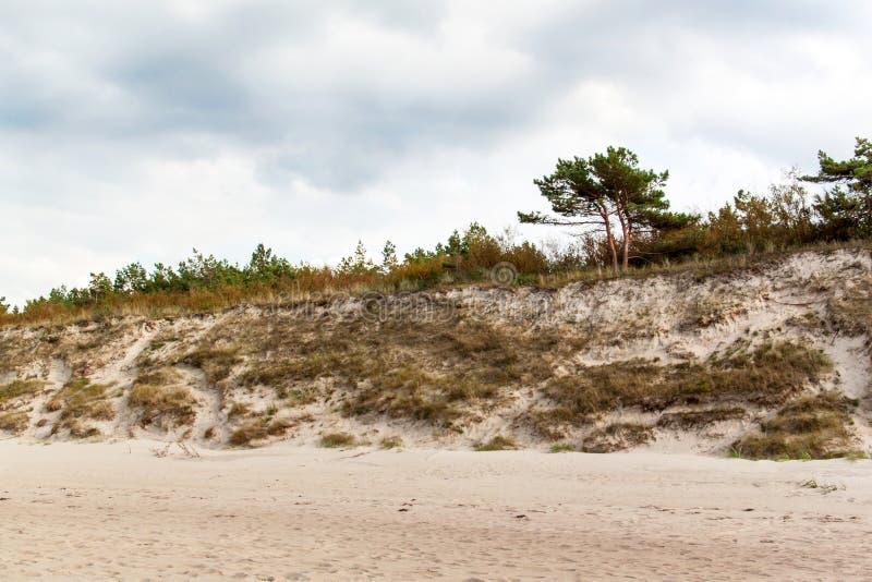 Manhã fria do outono da costa de mar Báltico na praia Terra colorida da erosão seashore fotos de stock