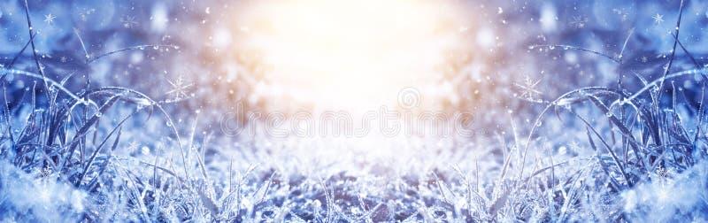 Manhã gelado do inverno Fundo da neve do inverno, cor azul, flocos de neve, luz solar, macro ilustração royalty free