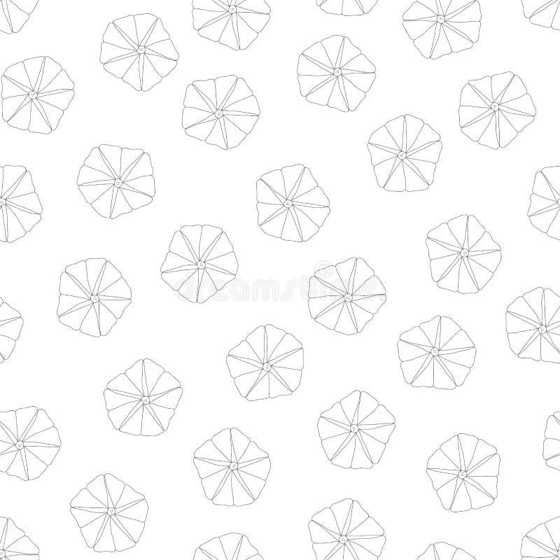 Manhã Glory Outline no fundo branco Ilustração do vetor ilustração royalty free