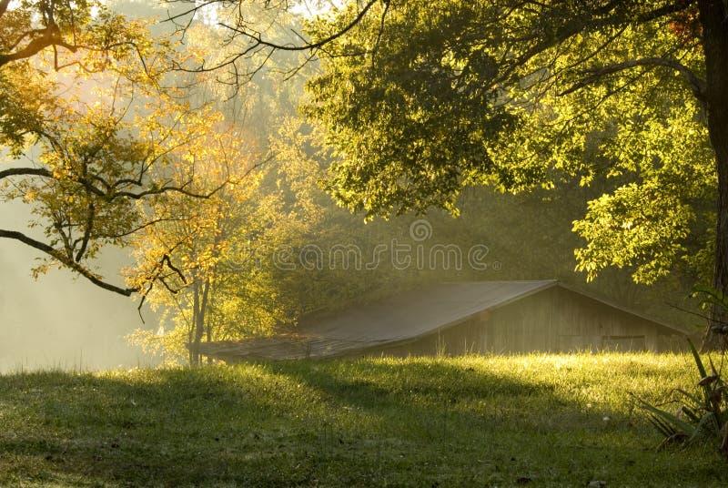 Manhã na exploração agrícola fotos de stock royalty free
