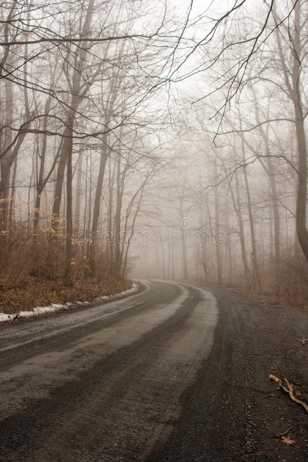 Manhã nevoenta imagem de stock royalty free