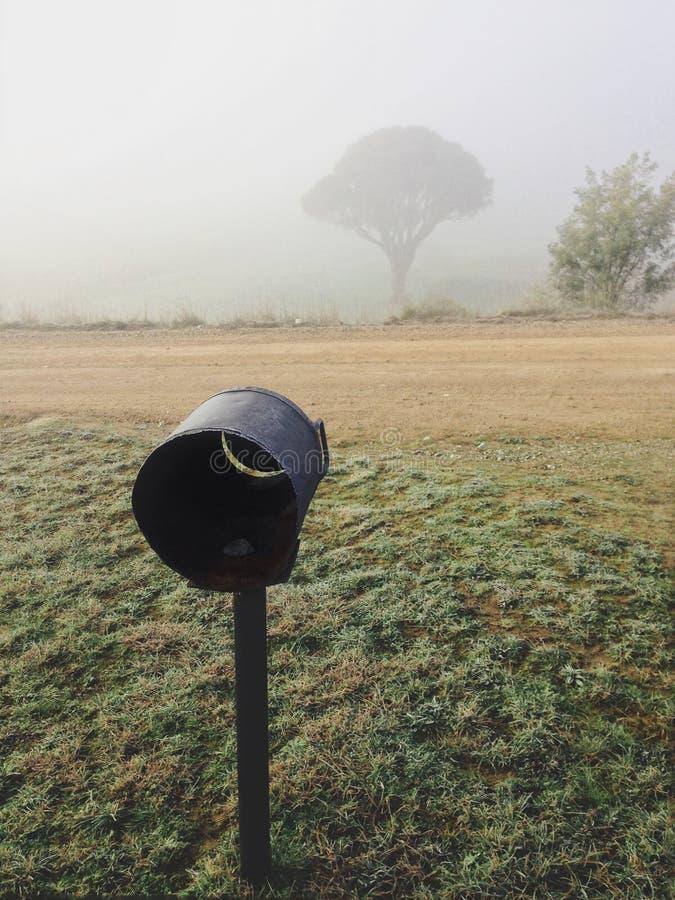 Manhã nevoenta Austrália rural fotos de stock