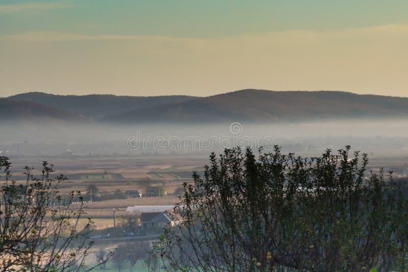 Manhã nevoenta em novembro imagem de stock royalty free