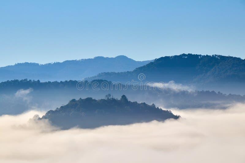 Manhã nevoenta entre as montanhas fotos de stock