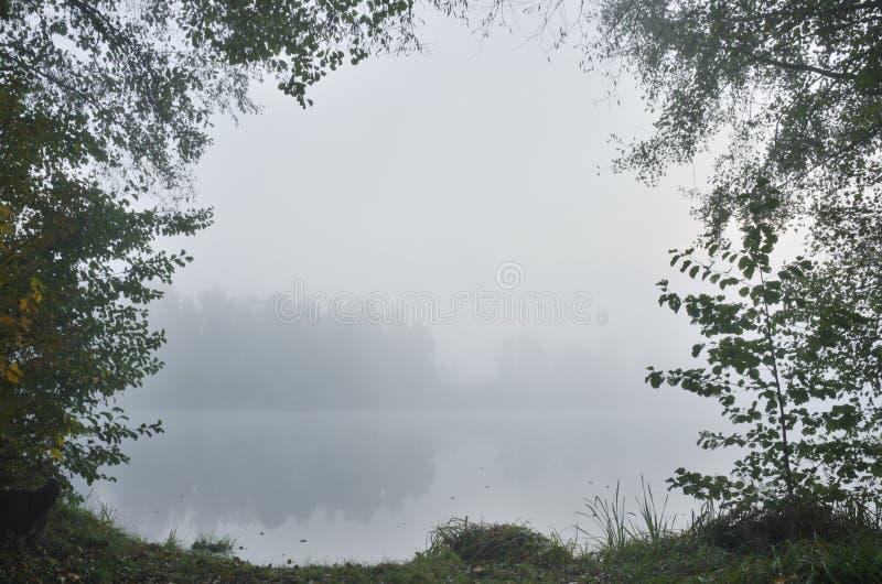 Manhã nevoenta no lago fotografia de stock royalty free