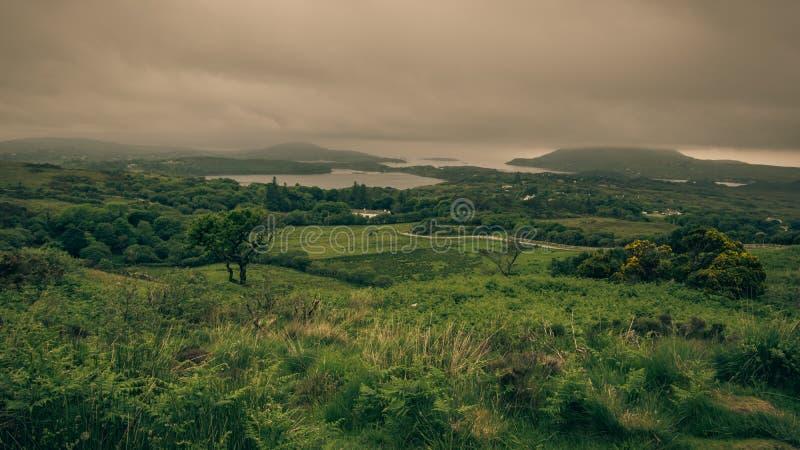 Manhã nevoenta no parque nacional de Connemara Coasta montanhoso imagem de stock royalty free