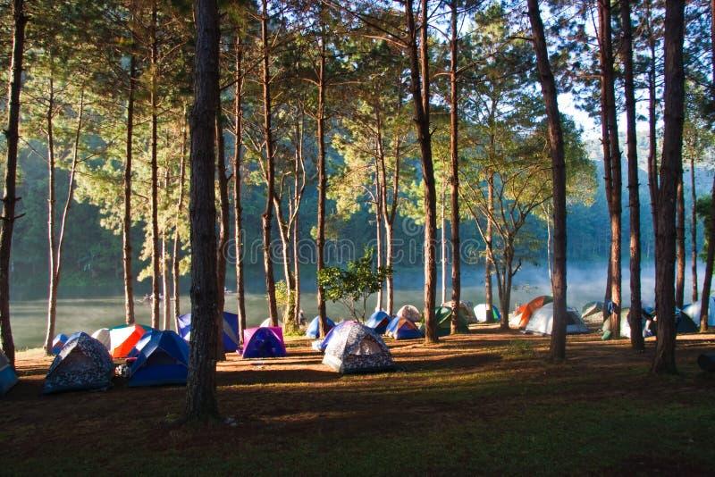 Manhã no parque de acampamento imagem de stock