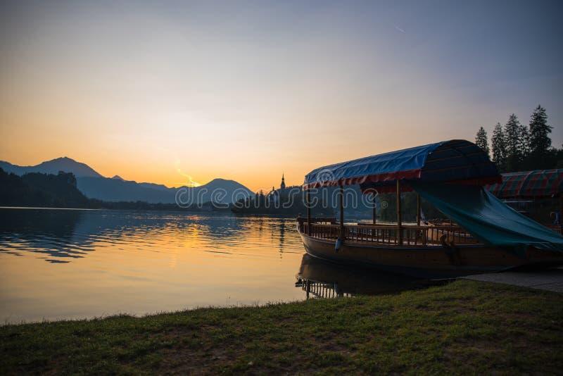 Manhã pelo lago fotos de stock royalty free