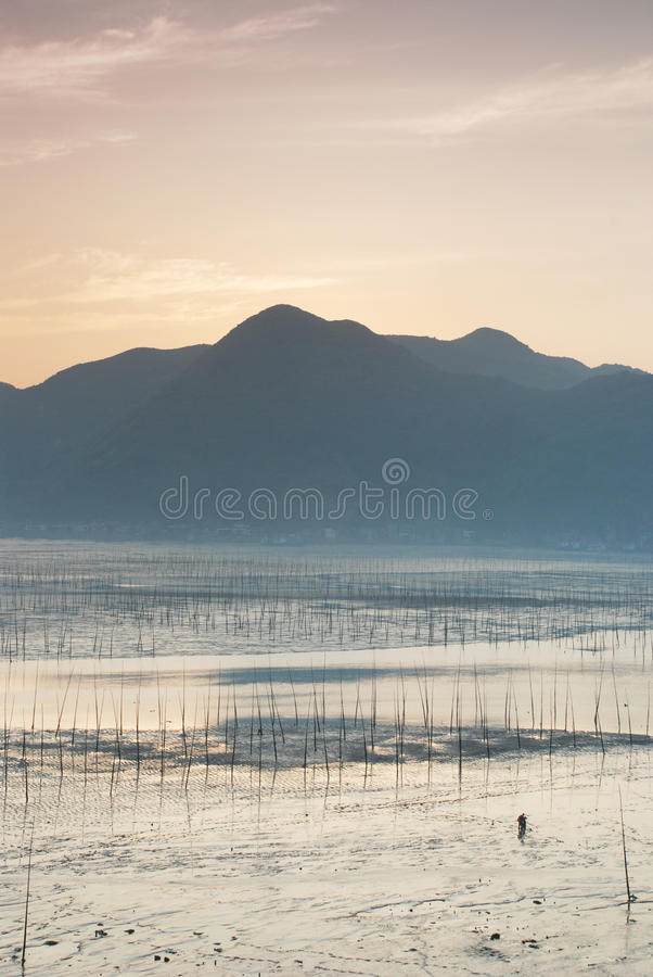 Manhã rasa dos mares e dos tidelands de Siapu
