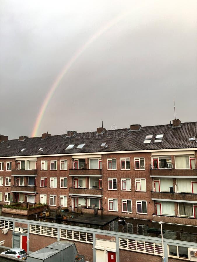 Manhã Rotterdam fotos de stock royalty free