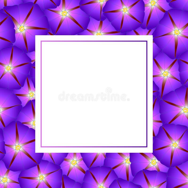 Manhã roxa Glory Flower Banner Card Border Ilustração do vetor ilustração stock