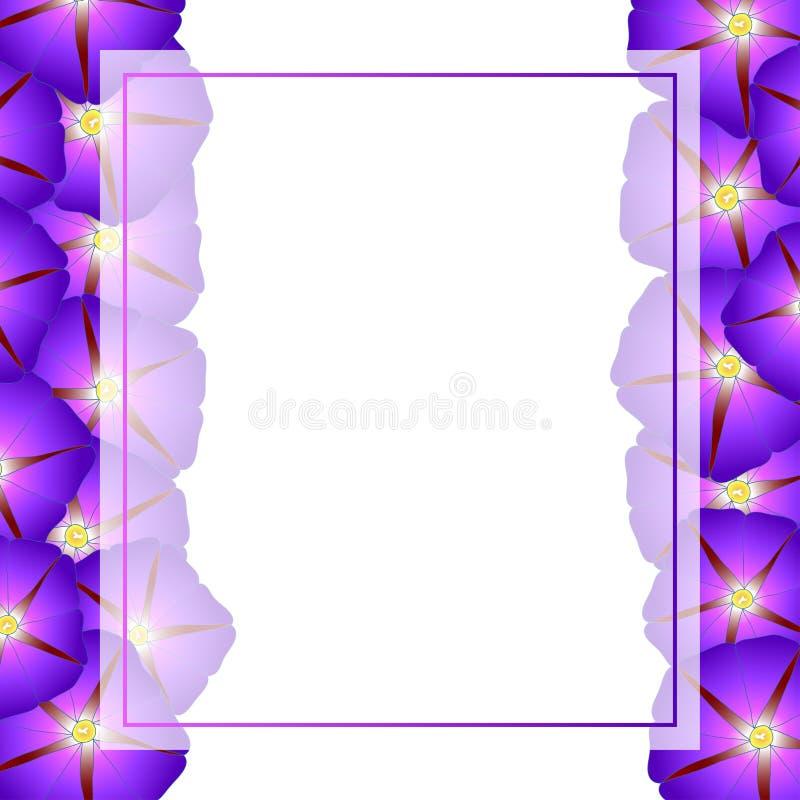 Manhã roxa Glory Flower Banner Card Border Ilustração do vetor ilustração do vetor