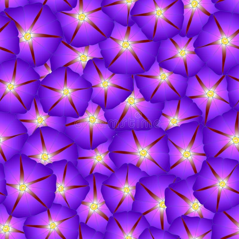 Manhã roxa Glory Flower Seamless Background Ilustração do vetor ilustração royalty free