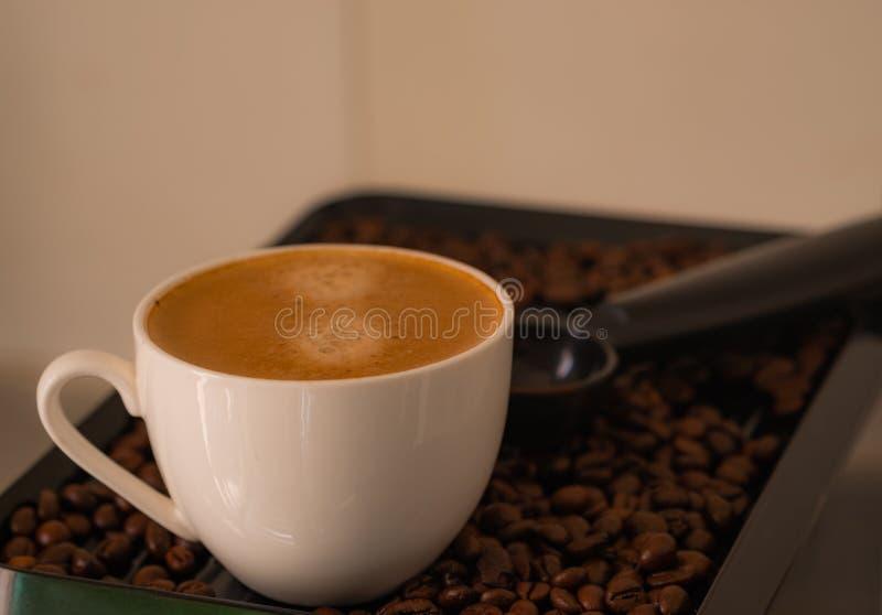A manhã, tiros do close-up do café agradável do copo de café pôs sobre o aroma perfumado dos feijões de café fotos de stock