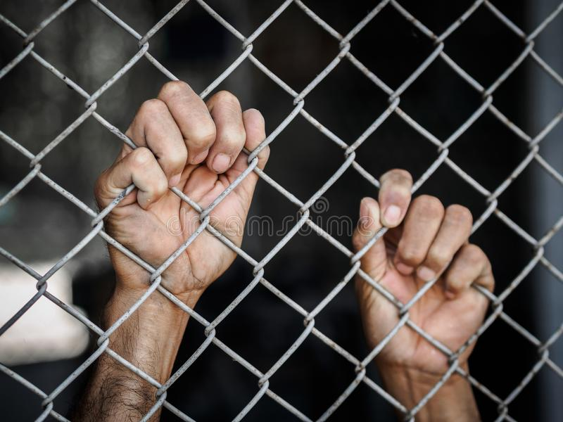 Manhand som är hållande på staketet för chain sammanlänkning som minns mänskliga rättigheter Da royaltyfria bilder