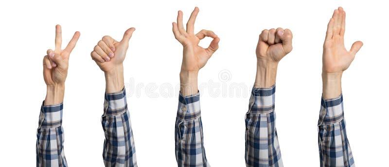 Manhand som visar olika gester royaltyfria foton