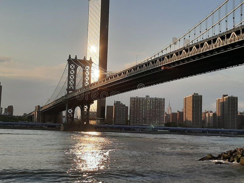 Manhattan bro och horisont som ses från Brooklyn Park arkivbilder