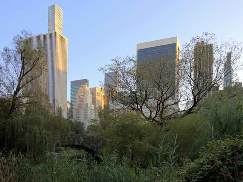Manhattan from Central Park royalty free stock photo