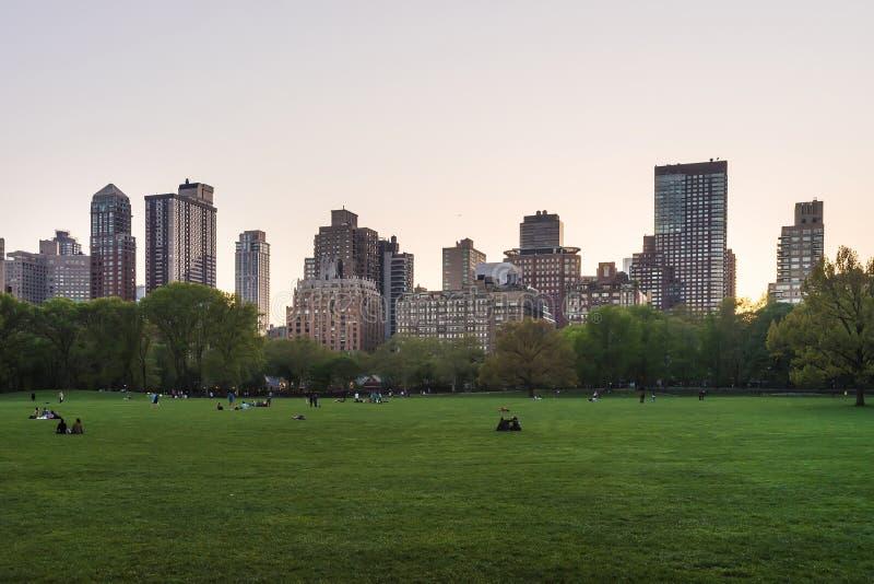 Manhattan i zielony gazon w central park Zachodni NYC zdjęcie stock