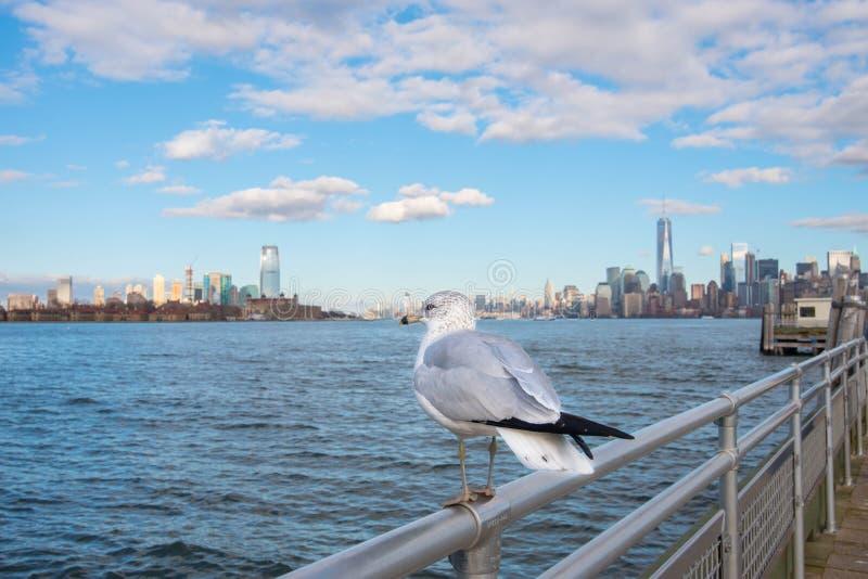 Manhattan, Nowy Jork miasto obraz royalty free
