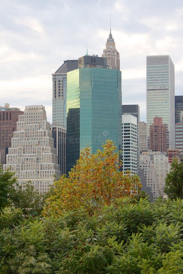 Manhattan skyskrapor bak träd arkivbild