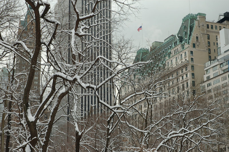 manhattan vit vinter royaltyfri fotografi