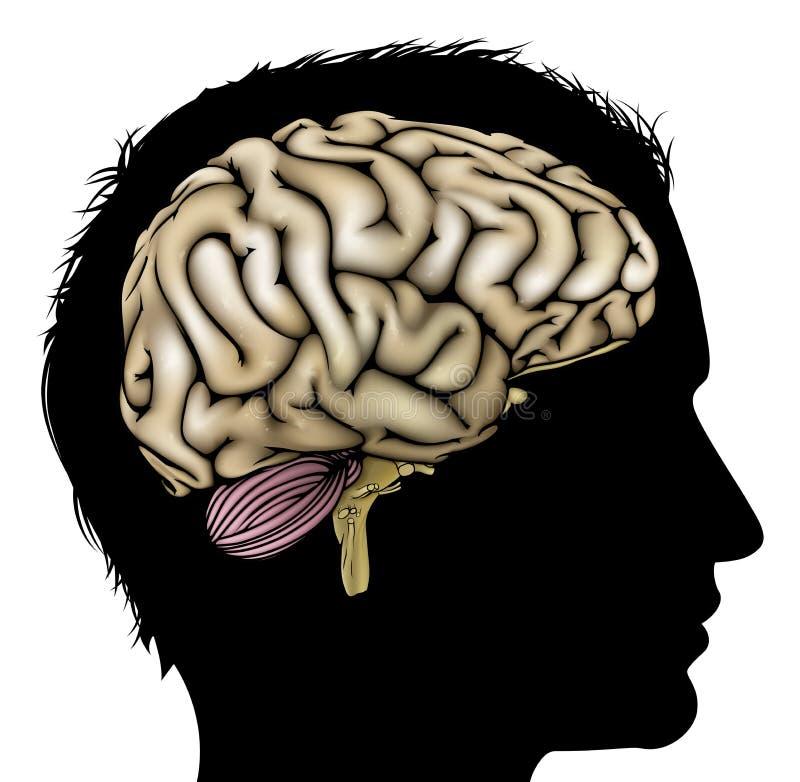 Manhjärnbegrepp royaltyfri illustrationer