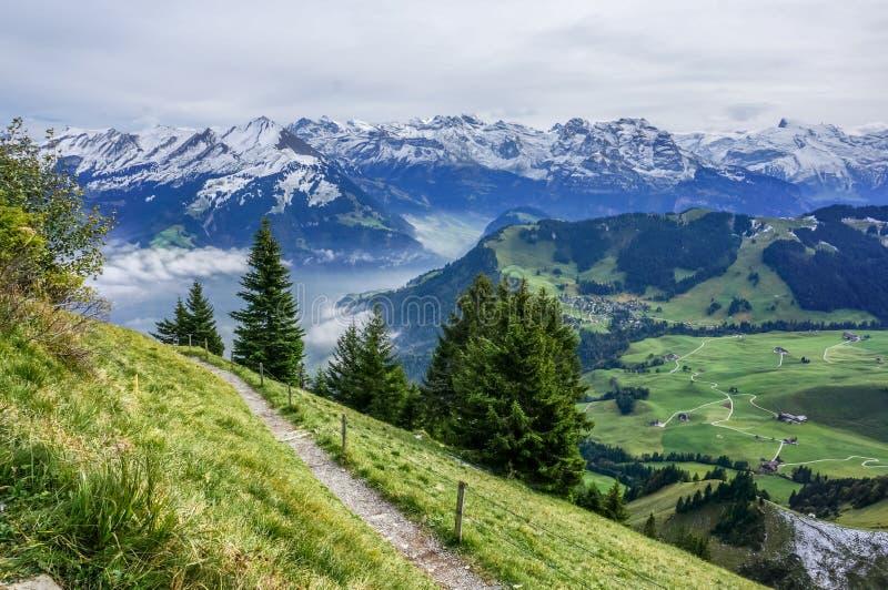 Manière de promenade sur la montagne avec l'arbre, l'herbe verte et l'alpe avec le sno images stock