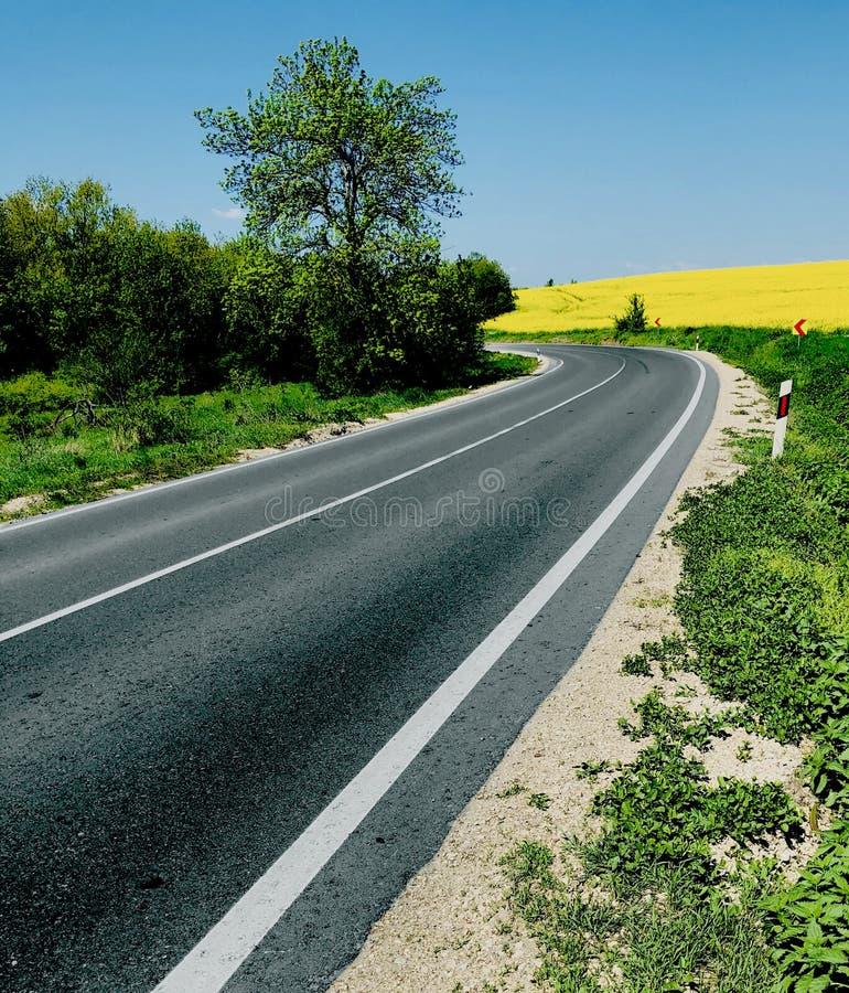 Manière de route sur un voyage lumineux de perspective de temps de jour ensoleillé au printemps photos libres de droits