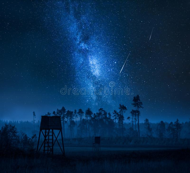 Manière laiteuse au-dessus de tour et de forêt de tir la nuit photos libres de droits
