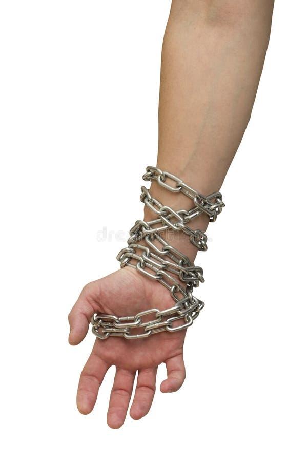 Mani in catene su un bianco del fondo Tema sociale: le mani hanno legato una catena del metallo su un fondo bianco fotografie stock libere da diritti
