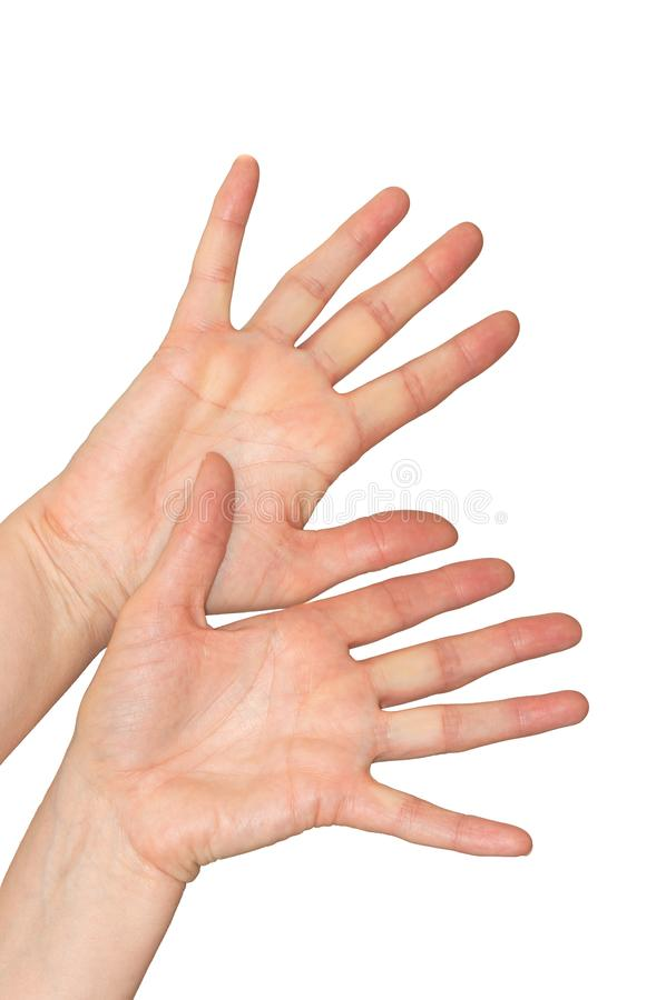 Mani caucasiche del ` s della donna nel gesto difensivo spaventato Isolato immagine stock libera da diritti